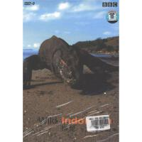 BBC2-印尼-野生篇DVD9