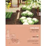 美味花园-打造蔬菜主题花园
