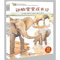 早早读动物博物馆绘本系列套装(共5册)――美国享誉世界的权威科普童书品牌,集趣味故事和益智游戏于一身,5册小小绘本教宝
