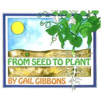 英文原版 从种子到植物 科普绘本 From Seed to Plant
