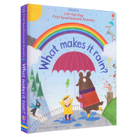 Usborne First Questions and Answers What Makes It Rain 雨水的形