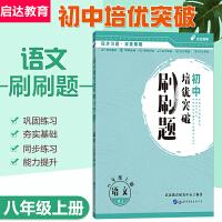 中公教育初中培优突破刷刷题:语文八年级上册RJ