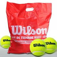 Wilson/威尔胜网球 威尔逊训练球 无压练习球/WRT13600