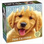 【预订】Puppies 2020 Day-To-Day Calendar 9781449498368