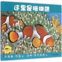 这里是珊瑚礁 (美)马德琳・邓菲 著;(美)汤姆・莱昂纳德 绘;刘漫萍 译