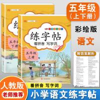 练字帖五年级上下册 人教版小学生语文看拼音写词语字帖