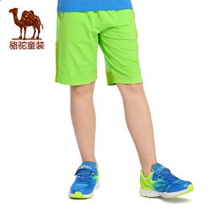 骆驼夏季男童五分裤儿童户外沙滩棉裤青少年休闲裤