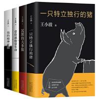 王小波杂文套装(共4册)