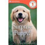 Surprise Puppy! (DK Readers Level 1) DK科普分级读物,1级 ISBN9781409373698