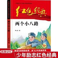 红色经典―两个小八路 中国红色儿童文学经典系列 小学生四五六年级课外书 少年励志红色经典书籍故事书 革命传统教育读本爱国