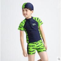 中大男童泳衣平角裤分体泳装三件套游泳衣泳裤温泉泳装