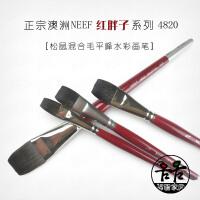 澳洲NEEF松鼠毛混合毛 4820平刷画笔 红胖子平峰平头 水彩画笔