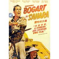 撒哈拉沙漠(DVD)