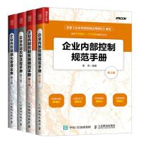企业内控精细化管理全案+控制流程+实施细则+控制规范 企业管理 人力资源 企业内部控制流程书籍 企业内控精细管理书籍