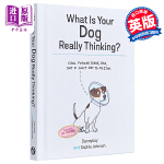 【中商原版】你的狗在想什么?英文原版 绘本 What Is Your Dog Really Thinking Soph