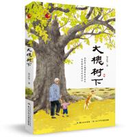金凤凰名家原创儿童小说书系:大槐树下
