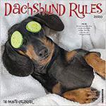 【预订】Dachshund Rules 2020 Wall Calendar (Dog Breed Calendar)