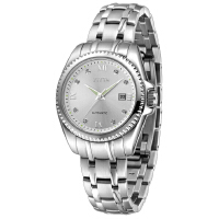 飞亚达Fiyta-芯动系列 LA8326.WWW 自动机械女士手表