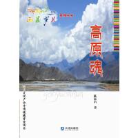 西藏岁月:高原魂