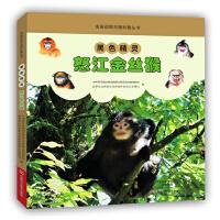 黑色精灵――怒江金丝猴