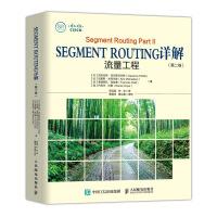 Segment Routing详解 第二卷 流量工程