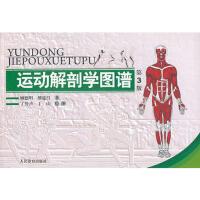【正版T】 运动解剖学图谱(第3版)