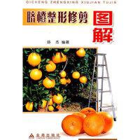 【二手旧书9成新】 脐橙整形修剪图解 陈杰著 金盾出版社 9787508234281