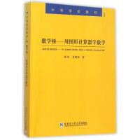 数学桥:用图形计算器学数学:to learn maths with a graph calculator 林风,黄炳锋