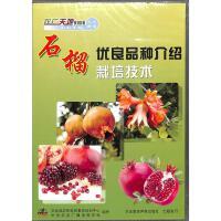 石榴优良品种介绍-石榴栽培技术(1片装)DVD( 货号:78809857350497)