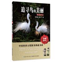 追寻鸟的美丽:观鸟手记――中国科普大奖图书典藏书系第6辑