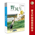 曹文轩纯美小说系列*野风车