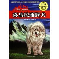 喜马拉雅野犬/了不起的动物伙伴/沈石溪精选国际大奖动物小说