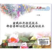 郁金香鲜切花促成栽培技术-盆栽牡丹控花技术VCD