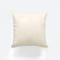 天鹅绒丝绒抱枕纯色沙发客厅靠枕靠垫北欧长方形定做抱枕套不含芯 65X65cm 抱枕套+枕芯