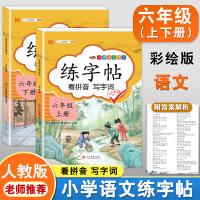 练字帖六年级上下册 人教版小学生语文看拼音写词语字帖