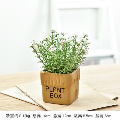 创意田园仿真多肉植物盆栽花艺装饰品小盆景室内假花桌面小摆件  创意小摆件,给你不一样的感受