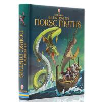 进口英文原版绘本 The Usborne Illustrated Norse Myths 精装全彩插画版 北欧神话故事
