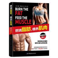 燃烧脂肪喂养肌肉4周掌握健美雕刻身体秘诀韦努托著精准熔化体脂营养方案与多重训练减脂塑形健身方法科学减肥计划间歇训练