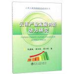 云南产业发展创新动力研究
