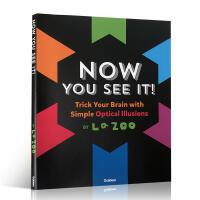 英文原版儿童视觉启蒙绘本 Now You See It : Amazing Optical Illusions 现在你
