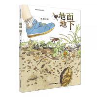 中国原创丰子恺优秀童书奖生态绘本:地面地下孩子手边靠谱的虫虫图记【直发】