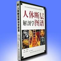 正版现货 人体断层解剖学图谱 刘树伟CT、MRI和断层解剖学习参考书 教程教材书籍 医学 人体局部解剖学山东科学技术出