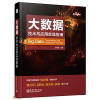 【正版二手书9成新左右】大数据:技术与应用实践指南 赵刚 电子工业出版社