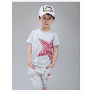 小虎宝儿童装男童纯棉夏装套装儿童短袖T恤哈伦短裤两件套幼童夏装