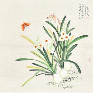 唐晓静水仙gh05286