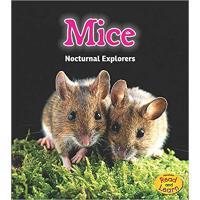 【预订】Mice: Nocturnal Explorers 9781484603178