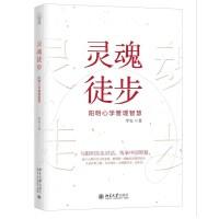 预售正版 灵魂徒步 阳明心学管理智慧 致良知管理的本质 知行合一 与阳明先生对话传承中国智慧 工业企业管理书籍 北京大学