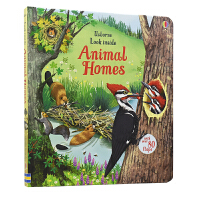 Usborne Look Inside Animal Homes 看里面系列之动物的家 立体机关纸板翻翻书英语版 儿童