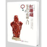 【二手书8成新】*鉴真与收藏入门 单峰林佳蓉 文化发展出版社