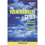 【预订】The Vulnerability of Cities 9781853838309
